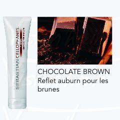 Cellophanes brun chocolat - Chocolate brown