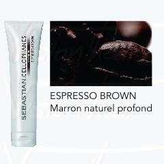 Cellophanes Expresso brown